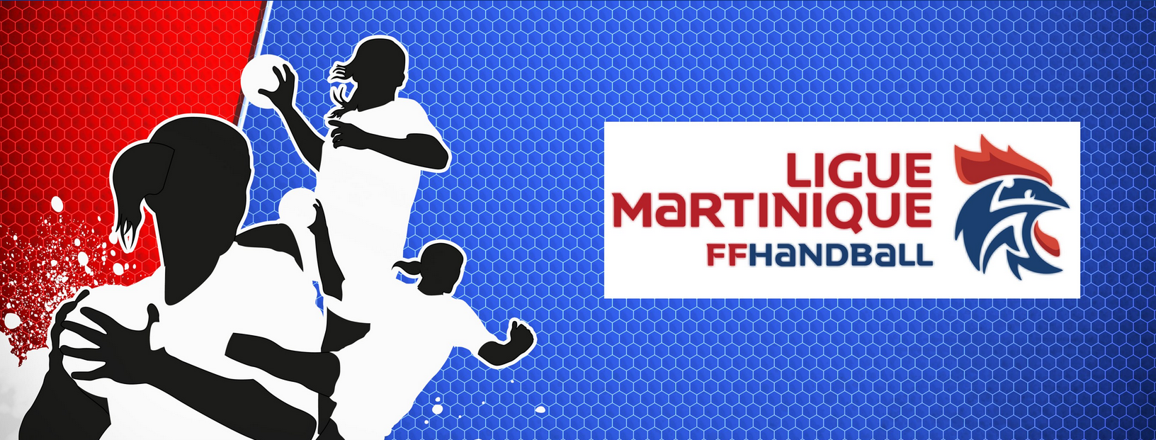 LIGUE DE HANDBALL DE LA MARTINIQUE
